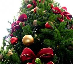 Køkkenmaskiner hitter under juletræet
