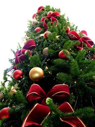 Køkkenmaskiner er et julegavehit og spreder masser af glæde under træet